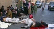 هذا مثال على ما قلته حتى الآن  28/12/2005م ذبح العشرات من سائقي الدراجات النارية في العاصمة صنعاء الذين احتشدوا أمام البرلمان اليمني اليوم (ثورا) ضخما أمام بوابة مجلس النواب، تقليدا لممارسة قبلية احتجاجية بهدف حث البرلمان على حل مشكلتهم مع وزارة الداخلية